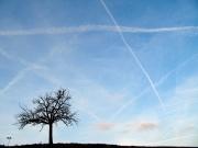 sky crossings by @libby_ol